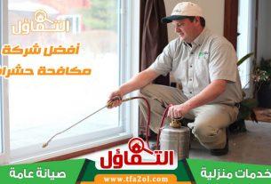 شركة مكافحة حشرات بالخبر - وارقام شركات مكافحة الحشرات ومكافحة النمل الابيض ورش حشرات