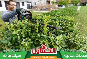 عامل قص اشجار بالخبر لتقليم وتهذيب الاشجار وتنسيق الحدائق بالخبر ذو خبرة واسعة وسعره مثالي